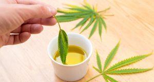 Principales beneficios de la marihuana terapéutica
